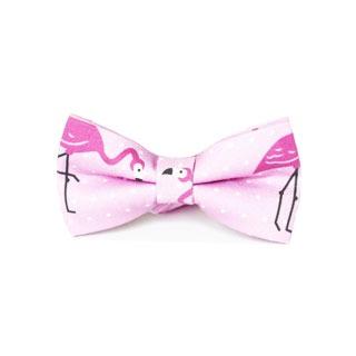 Męska mucha i chustka we flamingi - modne muchy