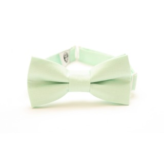 wedding accessories for groom – bow tie