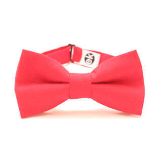 bow tie for wedding from Edyta Kleist