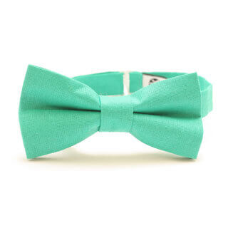 stylish present for him – bow tie for men